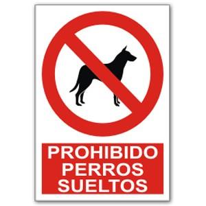 Normativa del Ayuntamiento de Madrid sobre los horarios en el que los perros pueden permanecer sueltos en los parques de la capital.