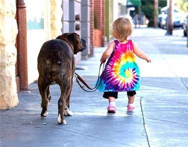 El paseo con nuestra mascota debe ser relajado y beneficioso para los dos, perro y dueño