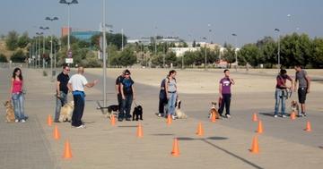 Uno de los primeros ejercicios del curso