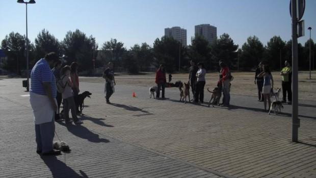 Nuestro club ha organizado la próxima actividad para el 2 de Diciembre de 2012 por el Pardo de Madrid...
