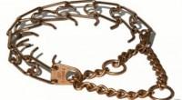 En el mercado nos podemos encontrar muchos tipos de collares. ¿Cual debemos elegir para nuestra mascota?
