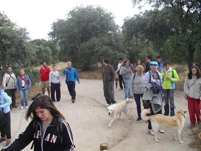 Caminata Pardo