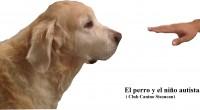 El niño autista y el perro de terapia.