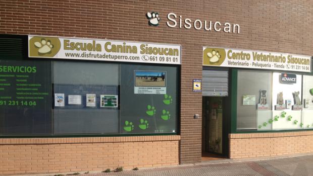 El CLUB SISOUCAN, está formado por profesionales de la educación canina, con una alta formación y experiencia en el sector.
