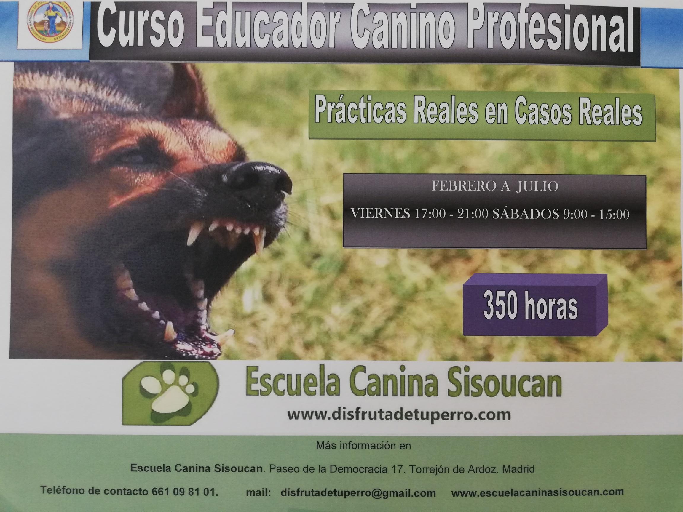 Foto cartel educador canino
