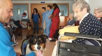 CURSO COMPLETO DE TERAPIAS ASISTIDAS CON PERROS: TÉCNICO Y EXPERTO EN TERAPIAS ASISTIDAS CON PERROS ¿Quieres formarte como técnico en intervenciones asistidas con perros y poder trabajar con perros y […]