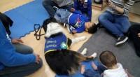 Curso de Educador Canino de Perro de Terapia en Febrero en Madrid PLAZAS LIMITADAS LUGAR: Escuela Canina Sisoucan. Paseo de la Democracia 17, Torrejon de Ardoz, Madrid. FECHAS: 12 Agosto […]